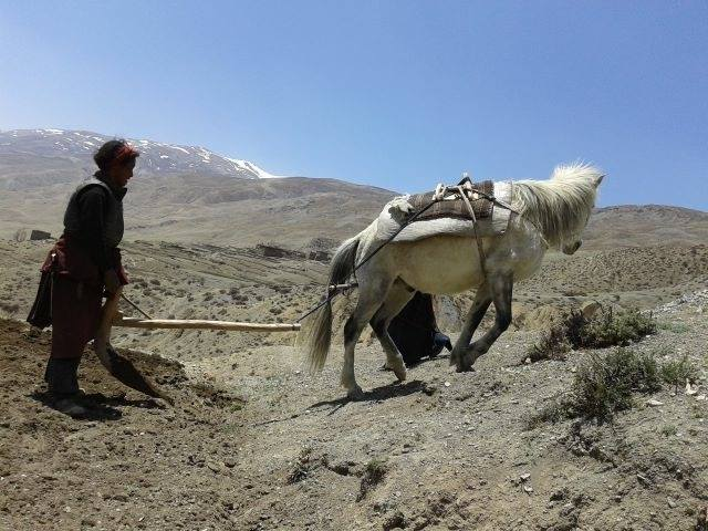Upper dolpa trekking`