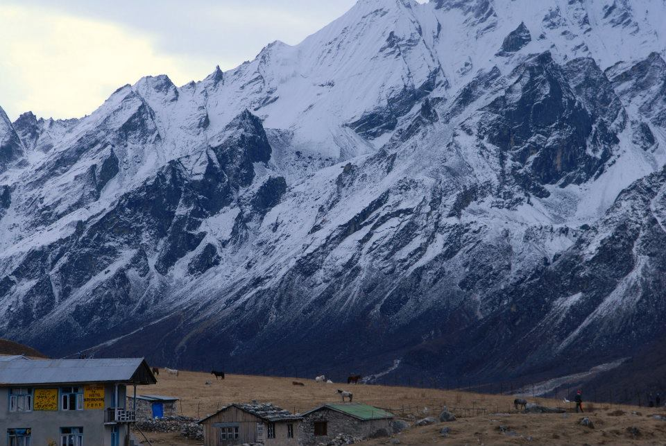 Himalayas while in the Langtang trekking