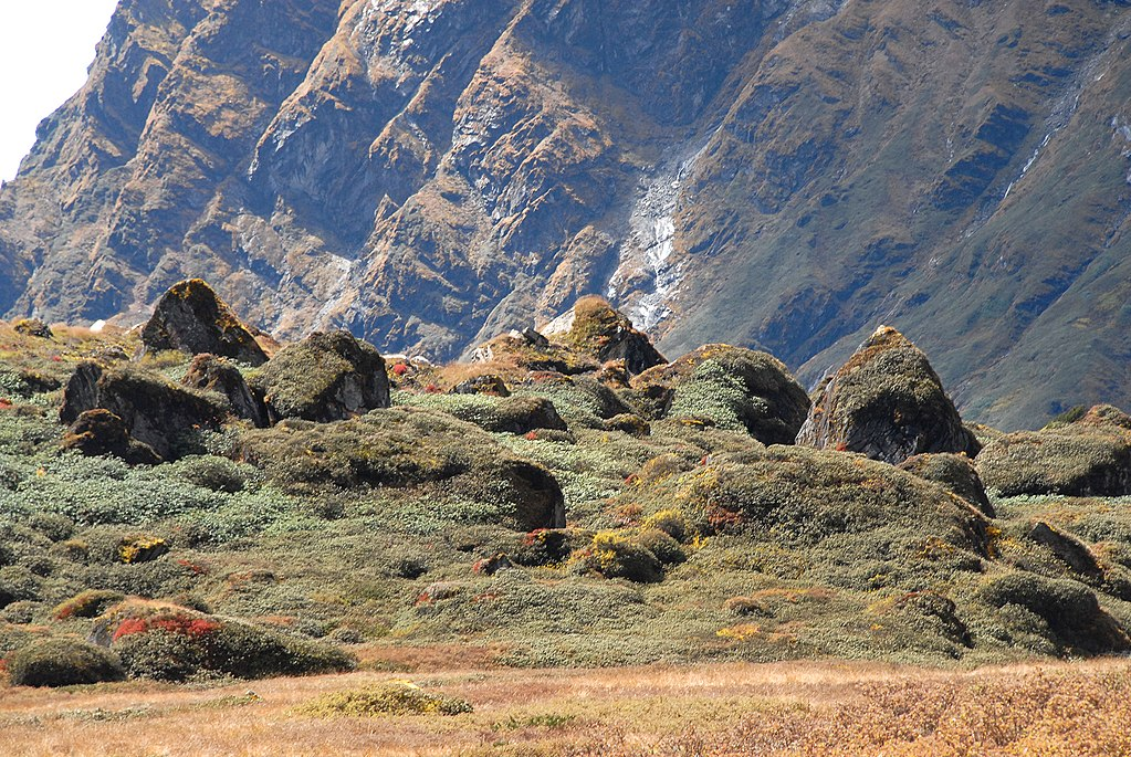 Makalu-Barun-National-Park,_Nepal