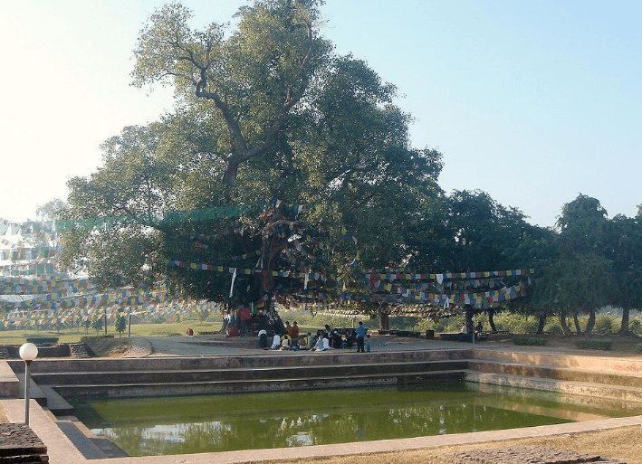 Puskarni-pond
